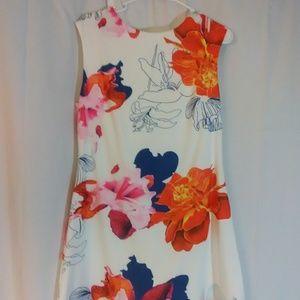 Shein Floral Print Mini Sheath Dress